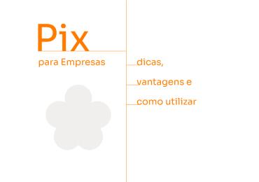Pix para Empresas: 5 vantagens, dicas e como utilizar
